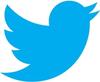 twitter logotyp e